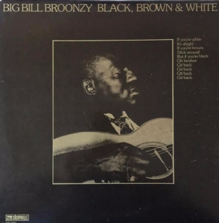 Big Bill Broonzy - Black, Brown & White (LP) (EX/VG-EX)